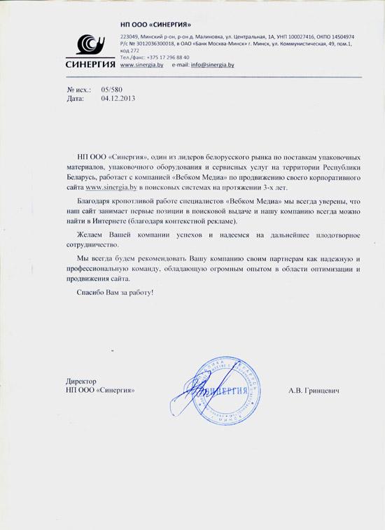 Директор  НП ООО «Синергия»